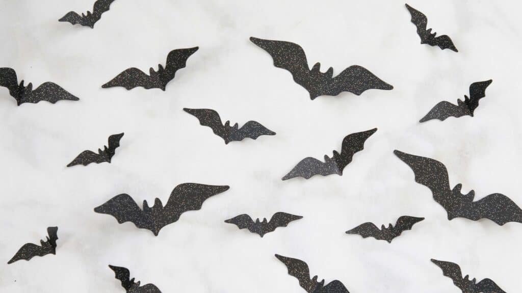 Paper Wreath by popular US craft blog, Sweet Red Poppy: image of black paper bats.